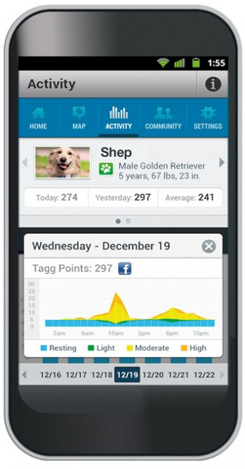 iPhone showing app that tracks dogs' activity levels