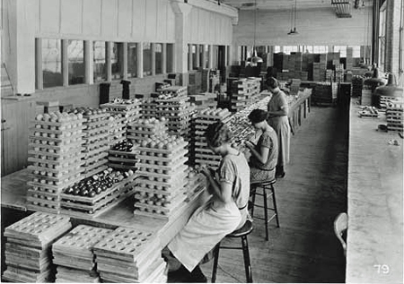 Women workers inspecting Celluloid billiard balls during manufacturing process