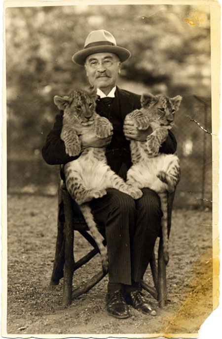 Baekeland seated on a chair, holding 2 leopard cubs