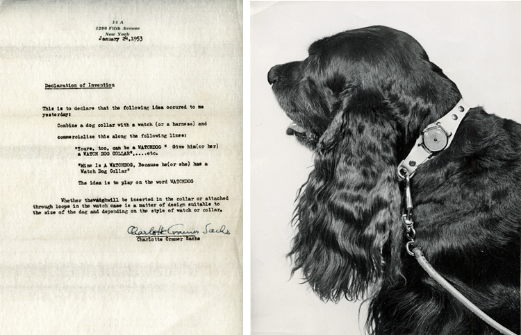 Composite image: letter from Sachs recording invention idea (left) and dog wearing a collar with a watch attached (right)