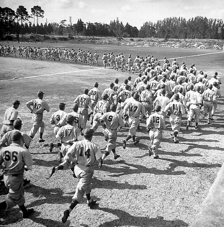 Overhead view of large group of baseball players rounding bases
