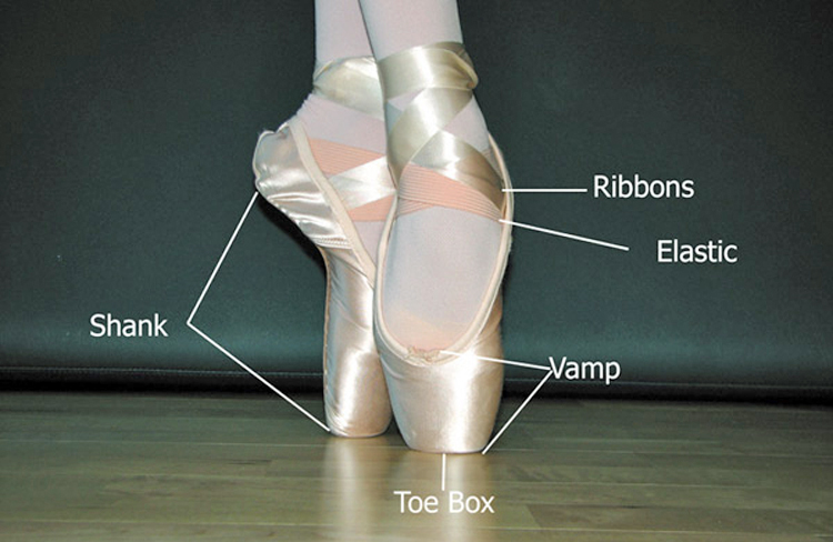 Pointe shoes with parts labeled.