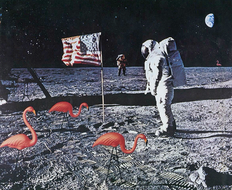 Artwork showing flamingos grazing on the moon while an astronaut looks at the American flag