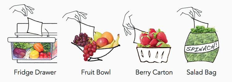 Drawing showing uses of FreshPaper in refrigerator, fruit bowl, berry carton, and salad bag