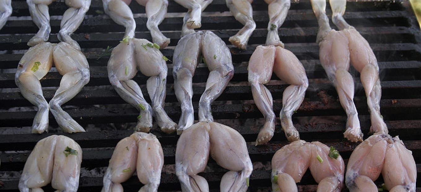 Stock photo of frogs legs on a grill