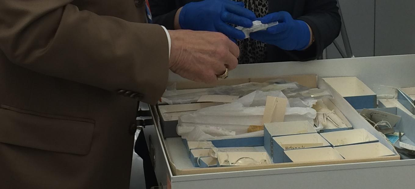 Pacemakers and heart valves in the collections at the National Museum of American History.