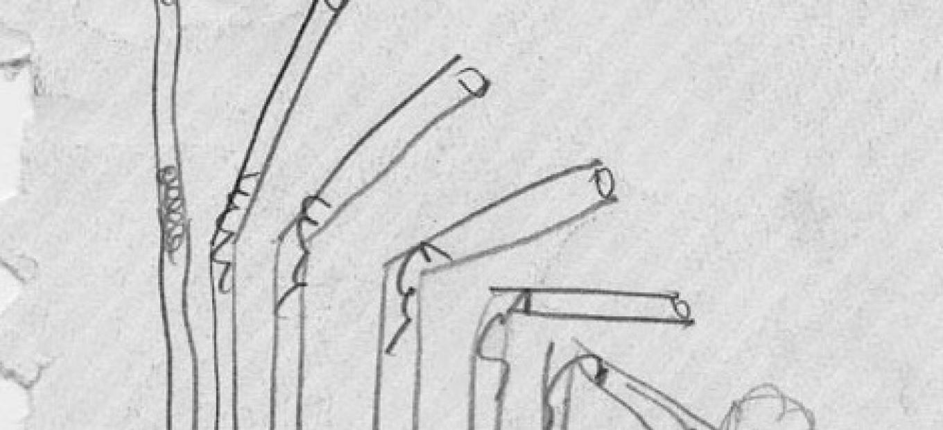 Pencil sketch of a flexible drinking straw.
