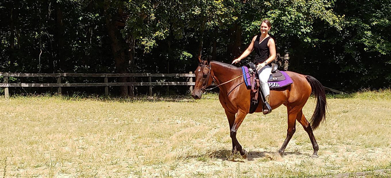A woman on horseback in a field