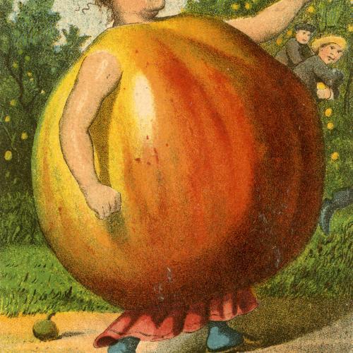 Trade card, Skandia Plow Company, 1887. (AC0060-0000026-01) (front-apple)