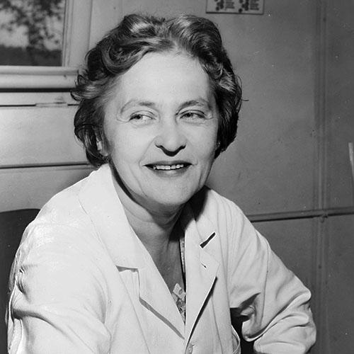 Mária Telkes seated at a desk