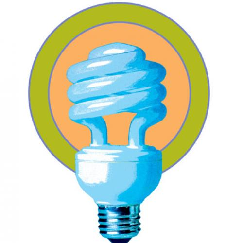 A stylized drawing of a compact fluorescent light bulb surrounded by a solid orange circle with a green border